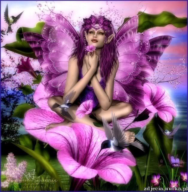 http://i229.photobucket.com/albums/ee116/RoShute/Fairies/HummingbirdFairie.jpg