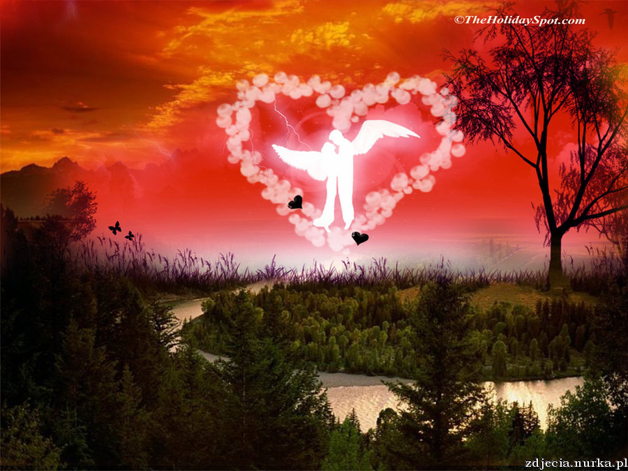 http://images2.fanpop.com/images/photos/4000000/Valentine-s-Day-valentines-day-4060238-1024-768.jpg