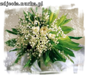 http://images48.fotosik.pl/289/1c04a5bf638e20a1.png