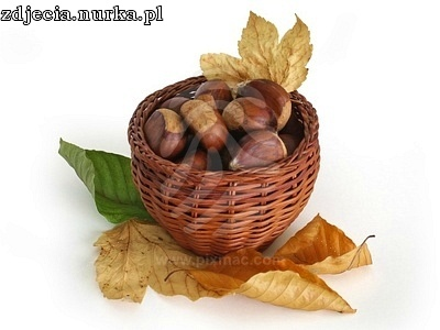 http://s3.amazonaws.com/pixmac-preview/chestnuts-in-a-basket-with-autumn-leaves.jpg