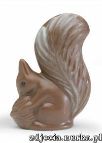http://www.chocolate.com/dimages/product_images/3124-milkchocolatesquirrels_207x290.jpg