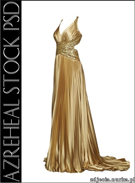 http://www.dizmex.com/uploads/baners/Gold_Satin_Dress.jpg