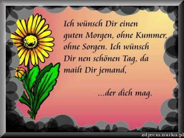 http://www.ecards4you.net/ecards_motive/motiv_guten_morgen_02.jpg