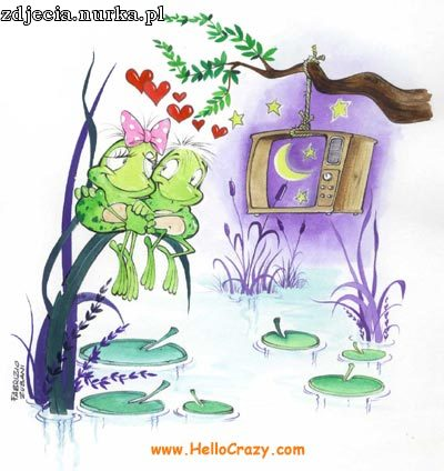 http://www.hellocrazy.com/reserved/cards/200501300632580.lovefrogs.jpg