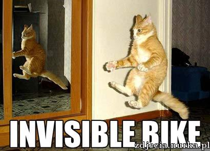 http://www.humorhound.com/wp-content/uploads/2008/10/invisible-bike-cat.jpg