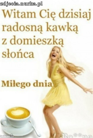 http://www.nume.pl/images/17774019344773464566.jpg