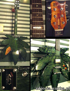 http://www.panopticist.com/graphics/pot_leaf_guitar.jpg