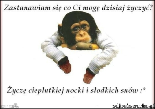 http://zdjecia.nurka.pl/images/74.50.124.201-image-images2-full-xbbh-1ow-1.jpg