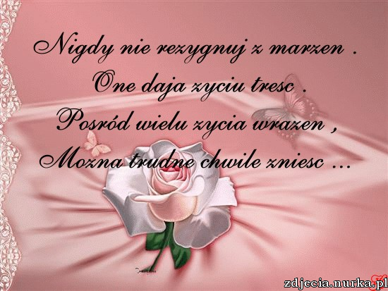 http://zdjecia.nurka.pl/images/img266.imageshack.us-ifs-2151-img503-2-48270464.png